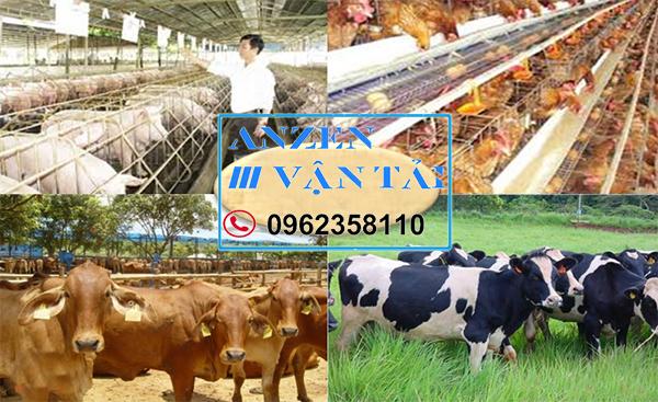Vận chuyển thức ăn chăn nuôi đi Thái Bình